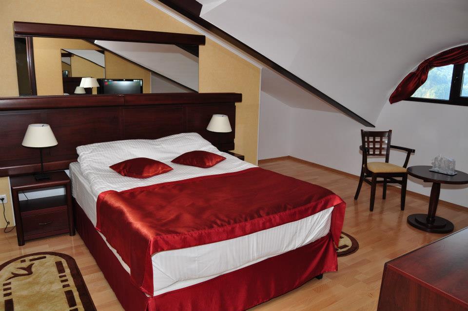 Cazare Cameră Matrimonială, Hotel Valea cu Pesti